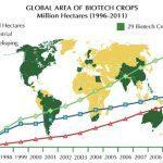 OGM, GLI AGRICOLTORI SCRIVONO ALL'UNIONE EUROPEA